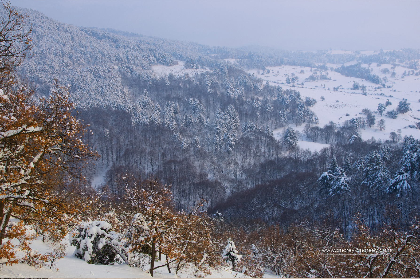 Rhodope mountains in the winter, Bulgaria