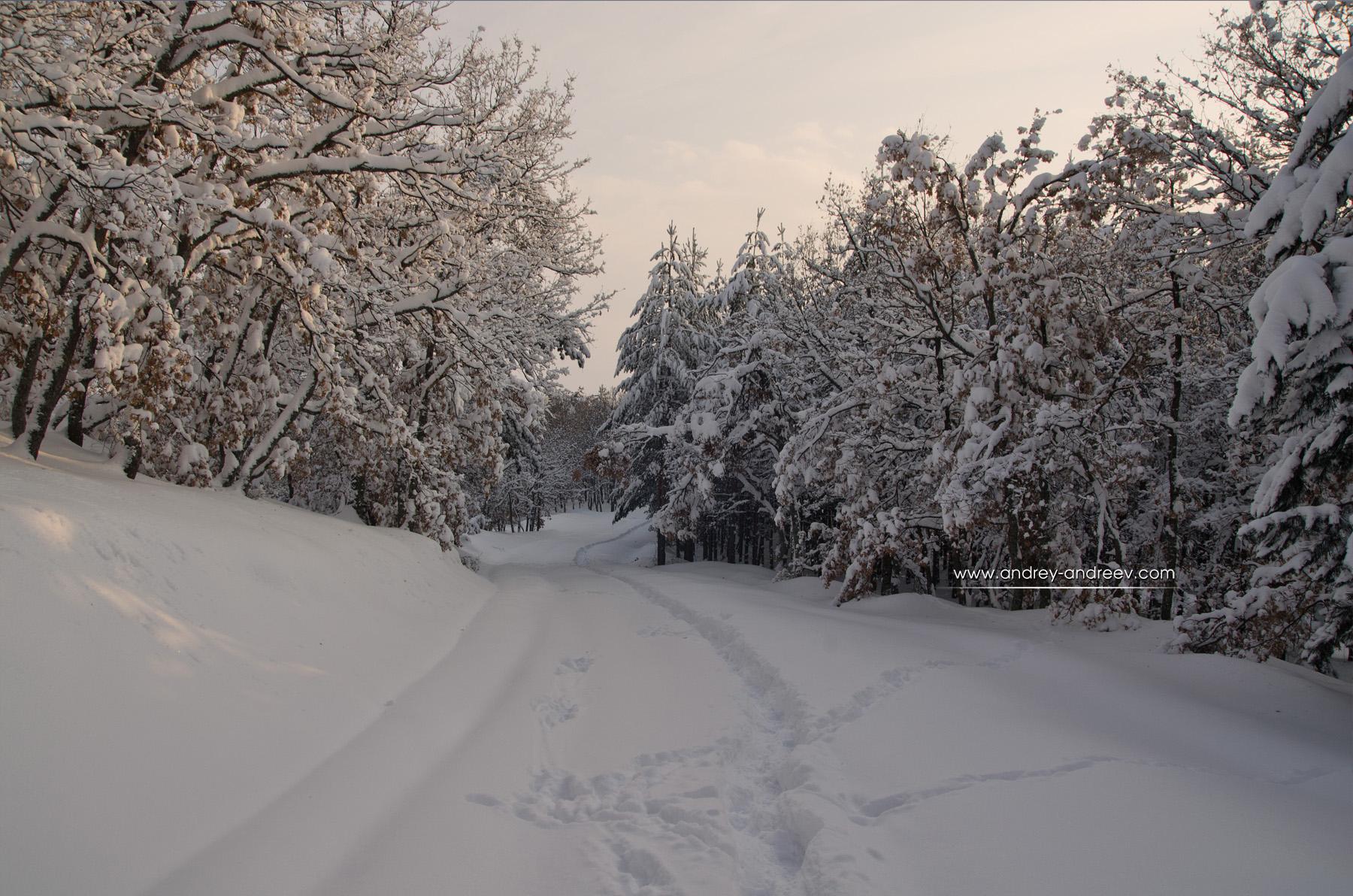 The white path to Tsepina fortress, Bulgaria