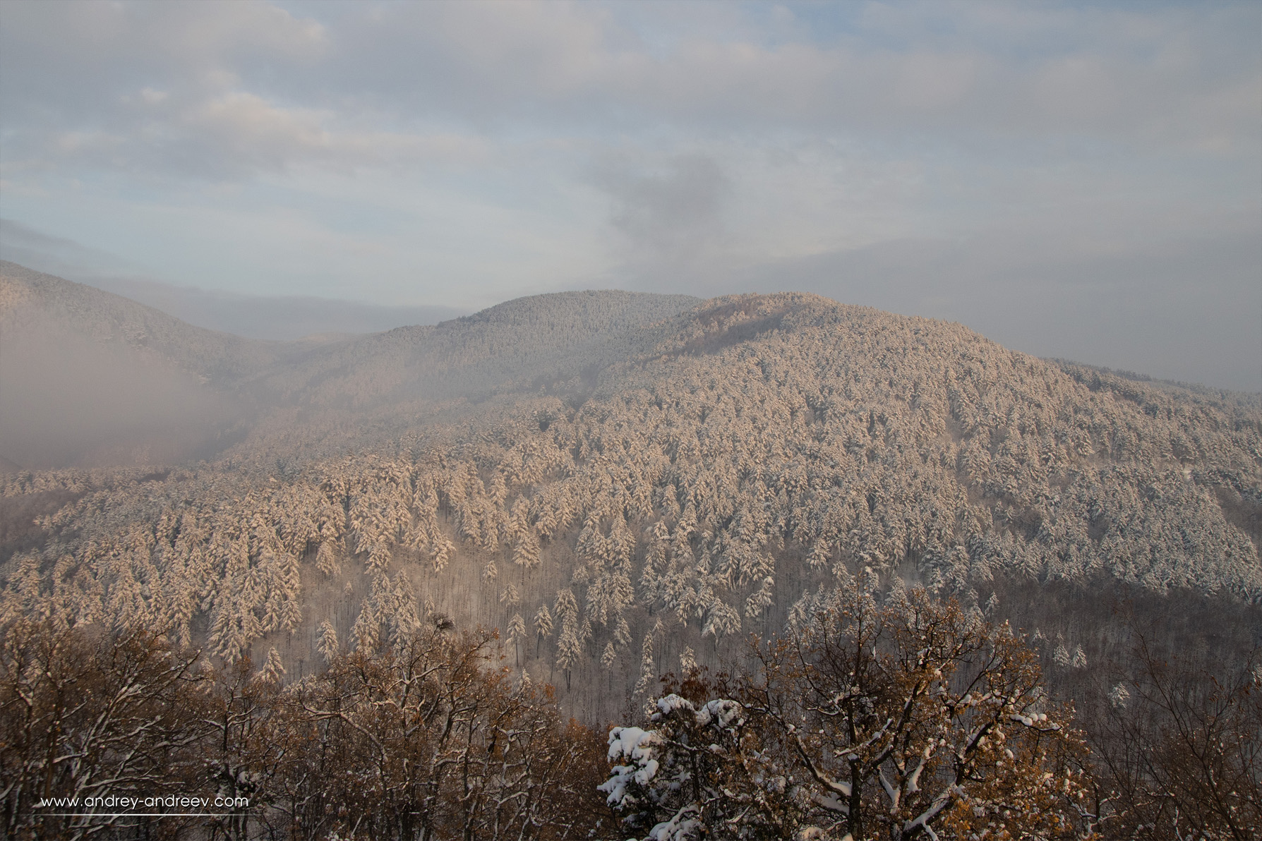 Beautiful Rhodopes