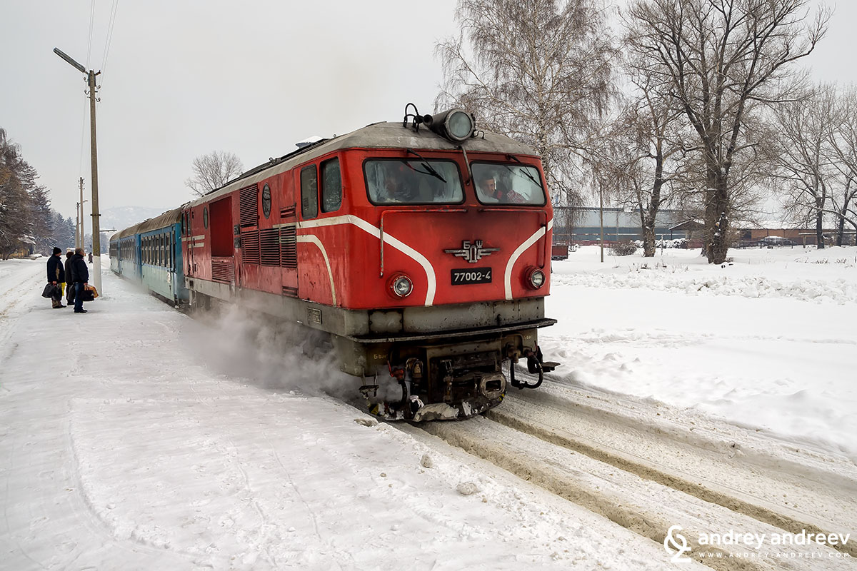 The narrow gauge train arriving at Velingrad Bulgaria