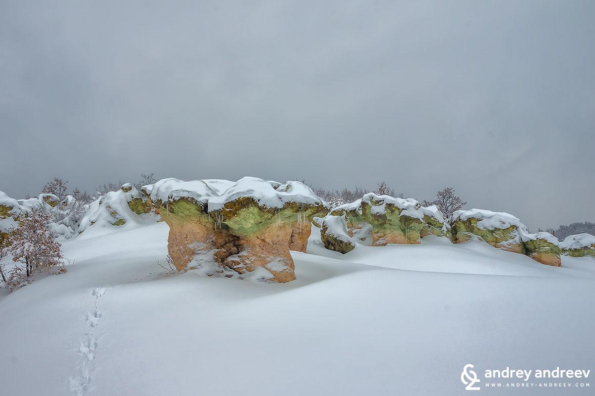 Скалният феномен Каменните гъби край село Бели Пласт