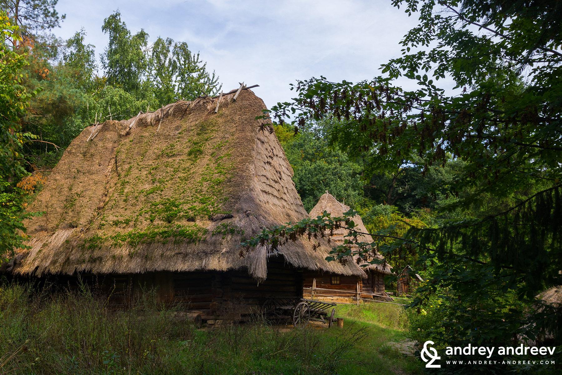 Карпатска Украйна