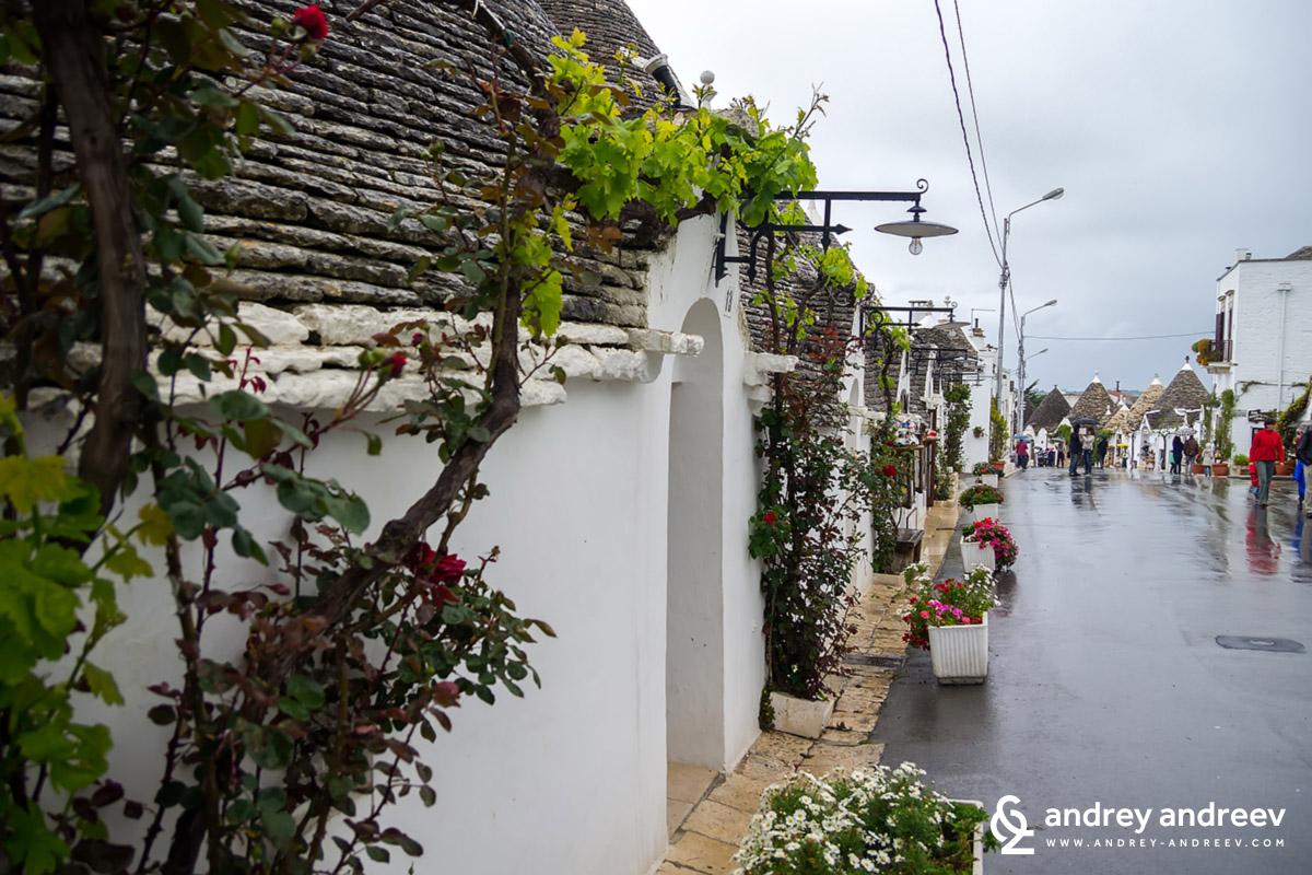 Алберобело в пролетния дъждовен ден