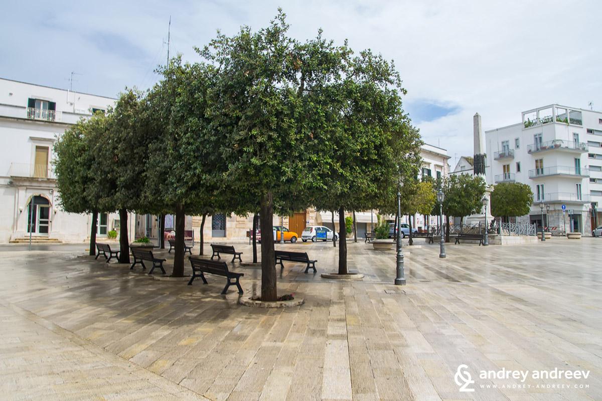 Площад в Алберобело