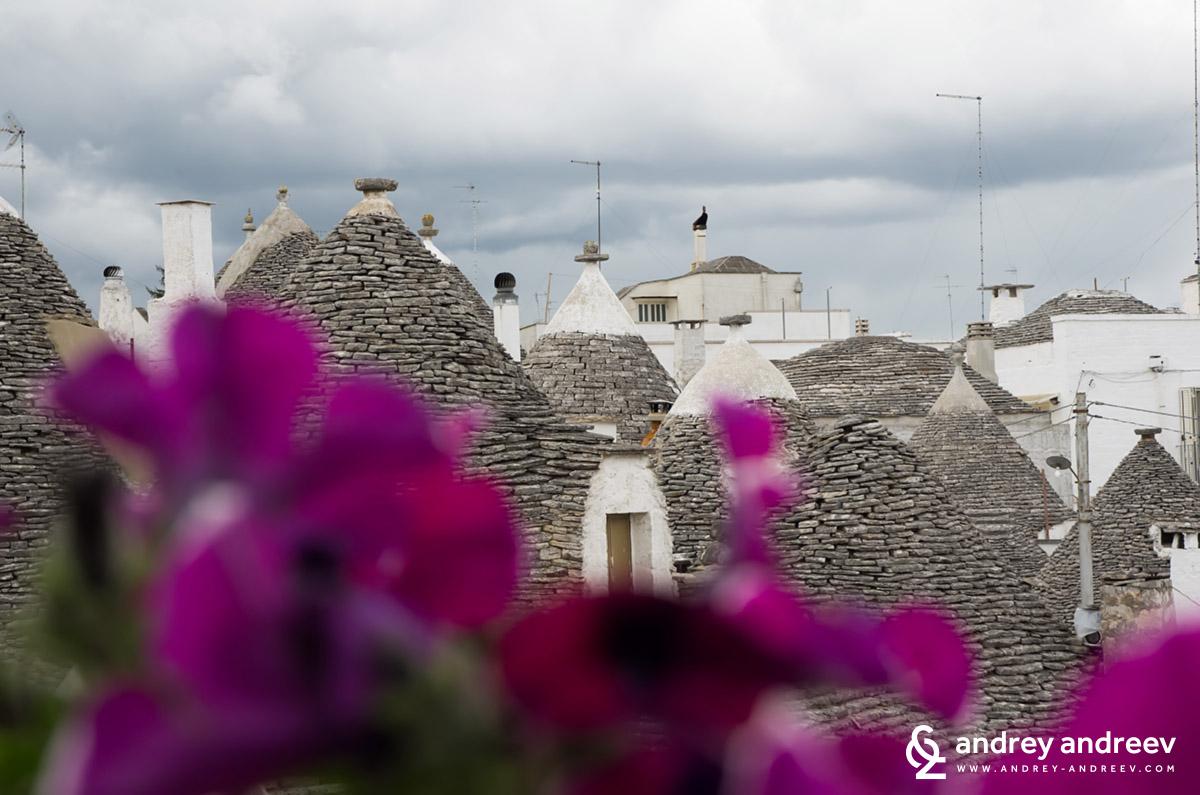 Покривите на къщите  в Алберобело