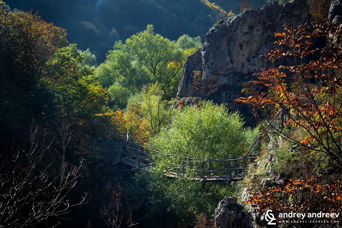 The first beautiful bridge