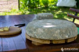 The green cheese of Bulgaria
