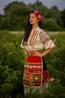 Rose Picking In Bulgaria Rozovo Village And Enina Village