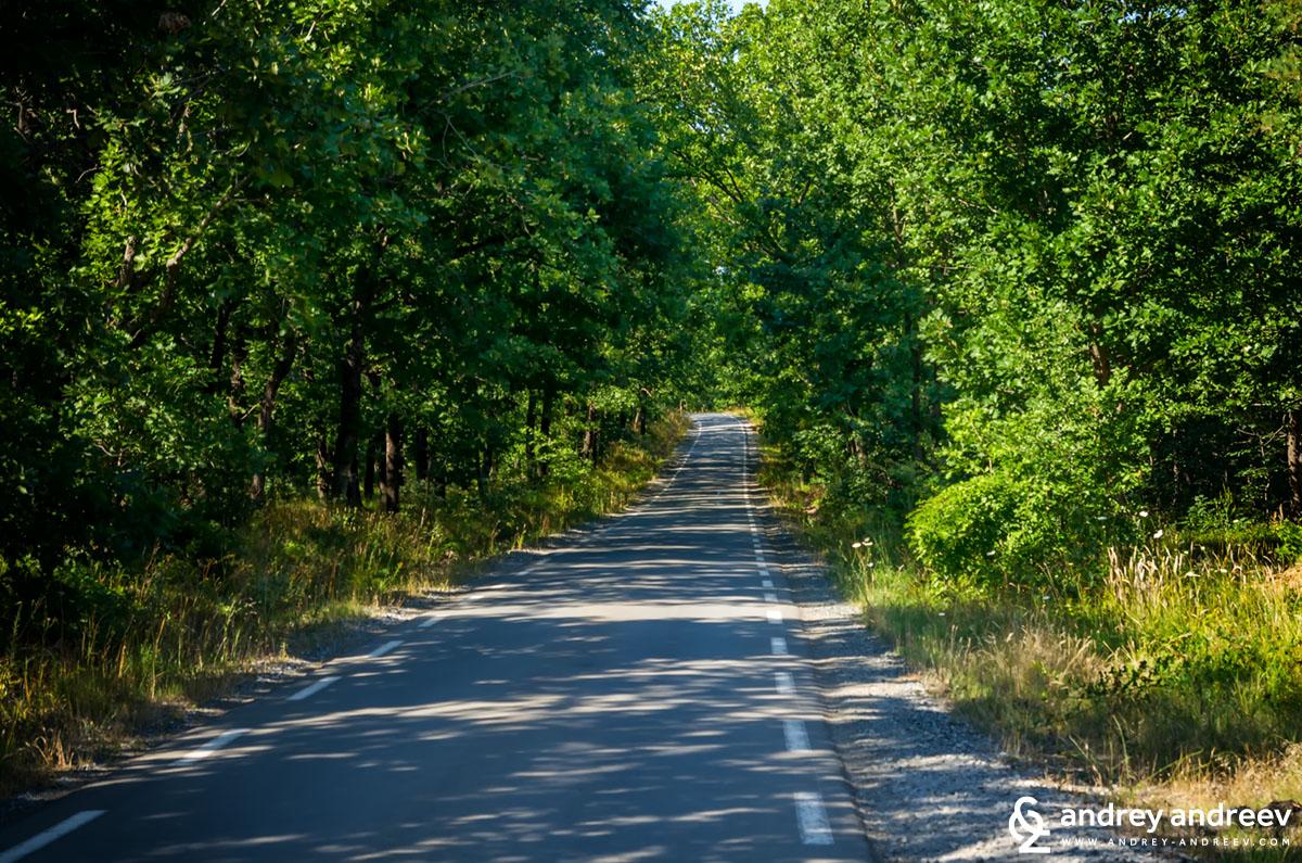 Пътят към Резово