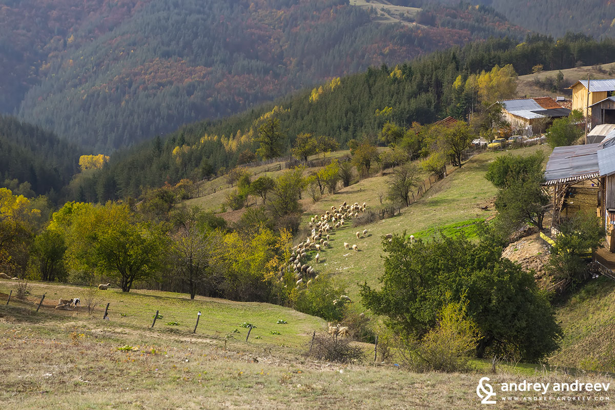 Nature around Velingrad Bulgaria