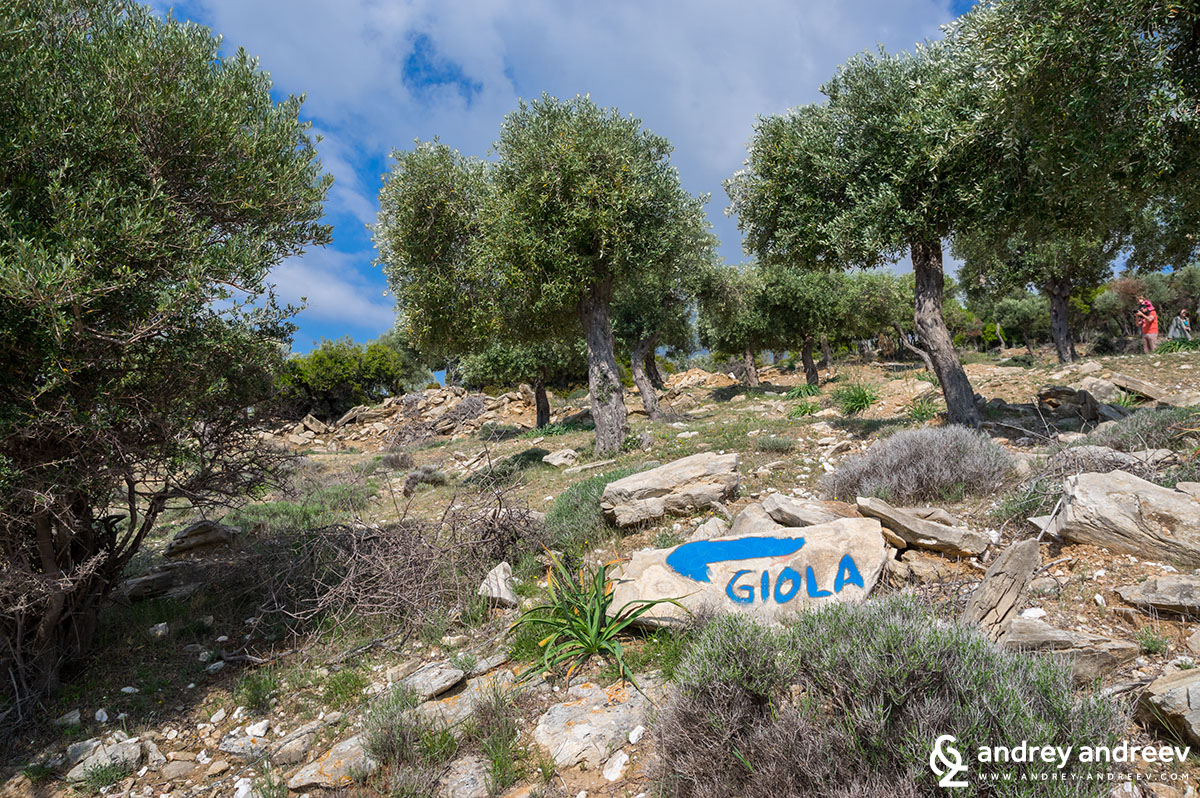 Sign to Giola , Tassos