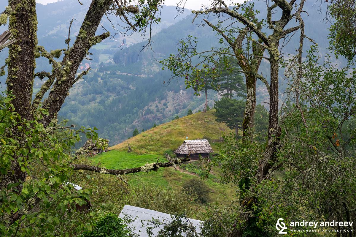 Национален парк Мокра Гора