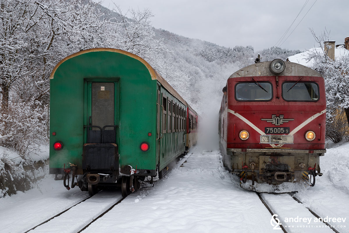 Narrow gauge trains at Avramovo train station