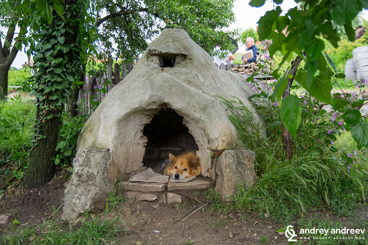 The dog house at Mezek winery