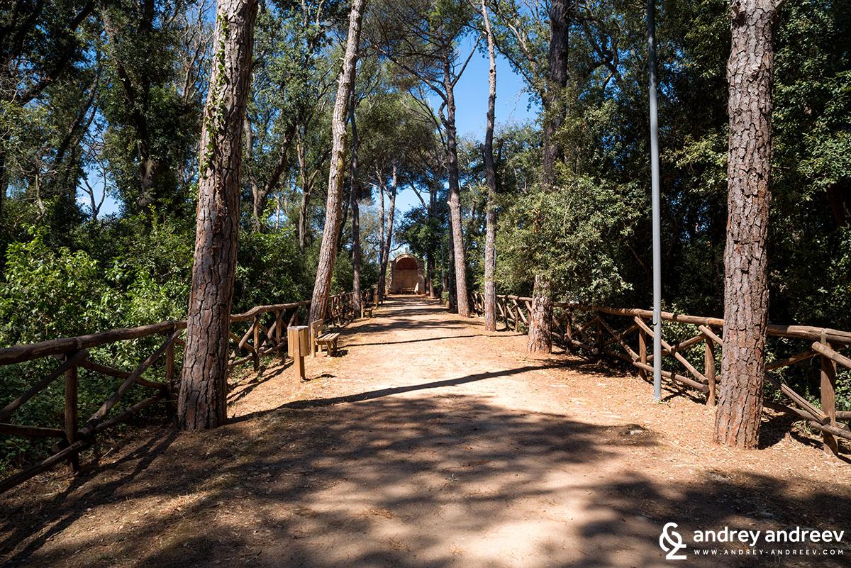 Гората на двореца Серафина-Саули в Тиджано