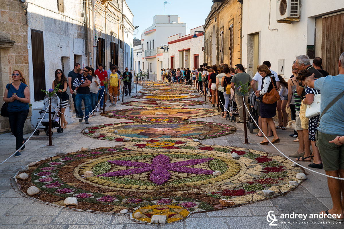 The carpet of flowers for the Corpus Domini feast in Patu