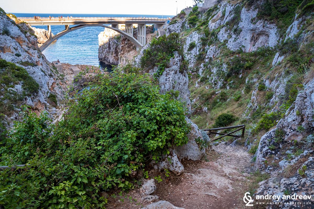 Ciolo bridge (Ponte ciolo)