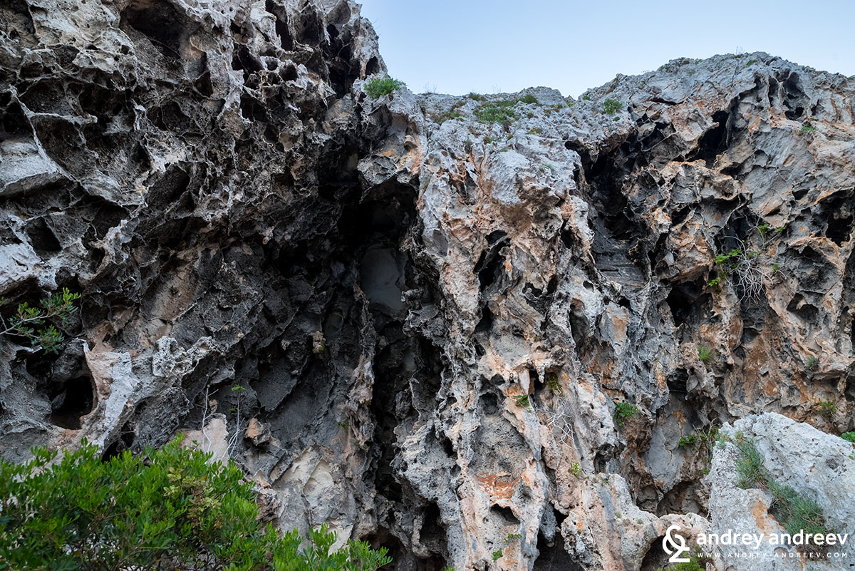 Пещерата Чиполиане - Grotte Cipolliane