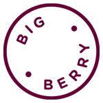 Big Berry logo