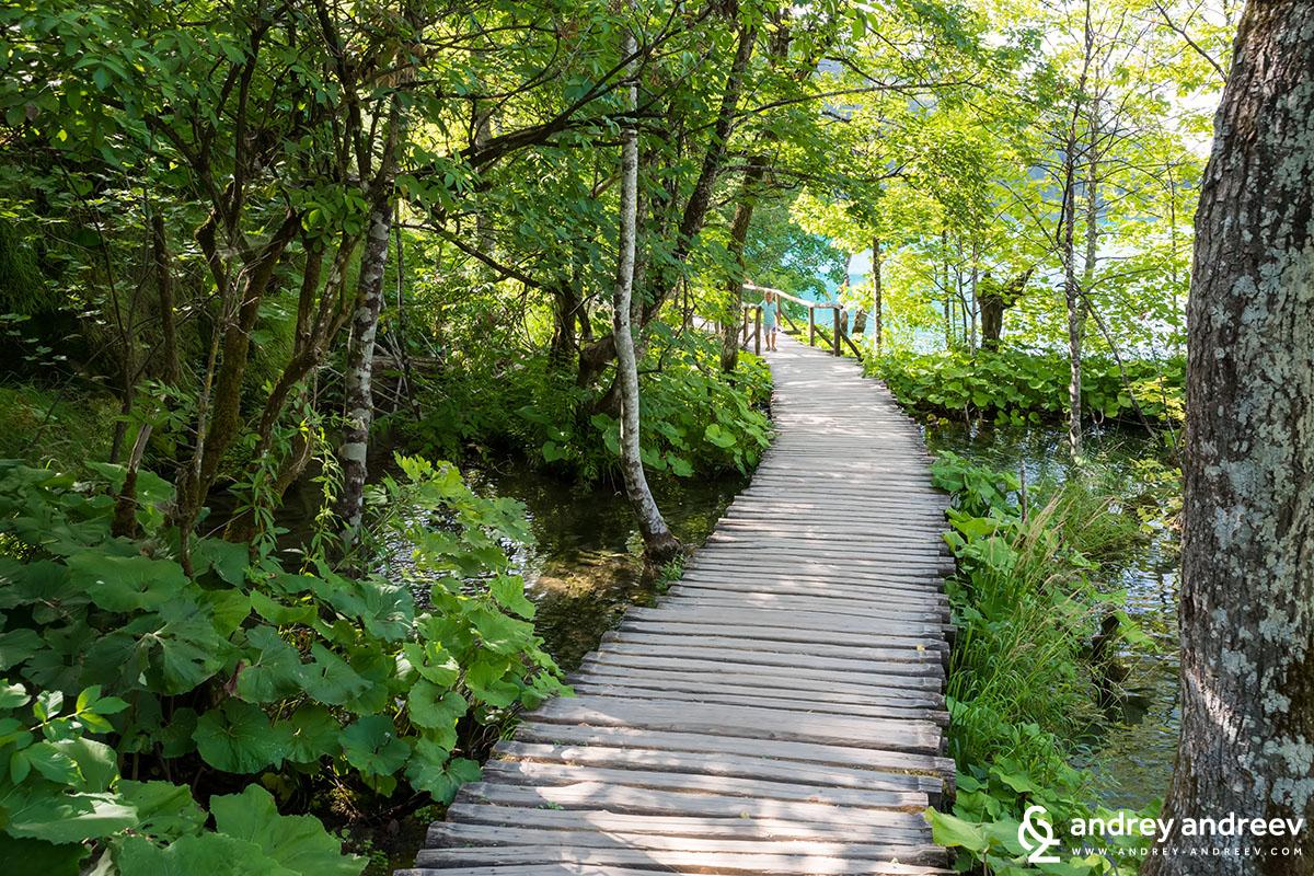Дървените декове по които се обикаля сред Плитвичките езера, Хърватия