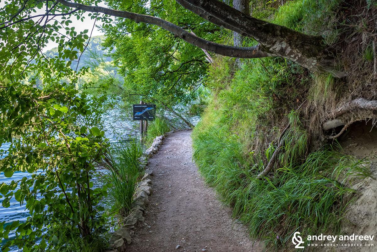 Пътека край езерото