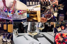 Best of Winebox Portfolio Tasting 2018 cover