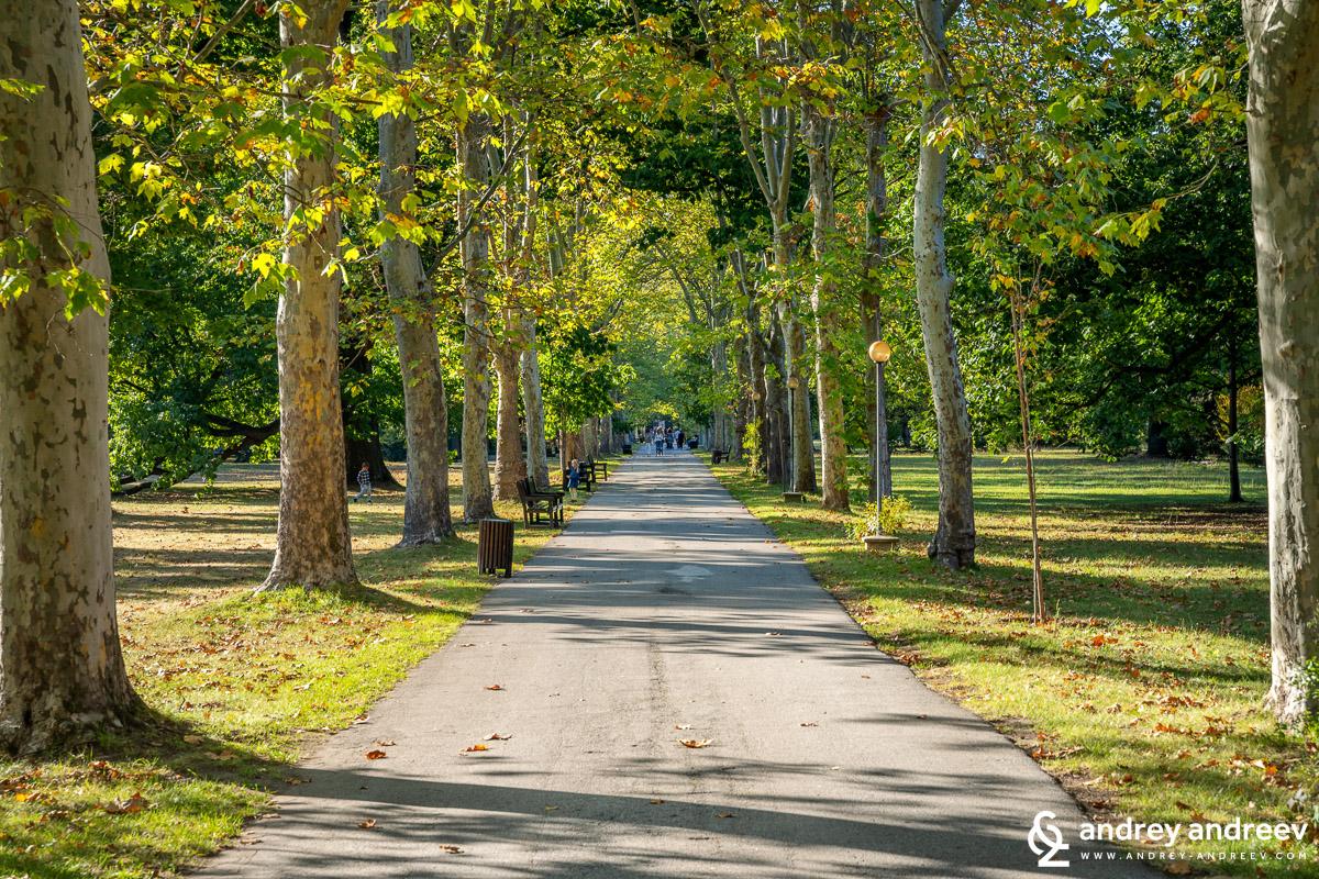 The main alley of Vrana park