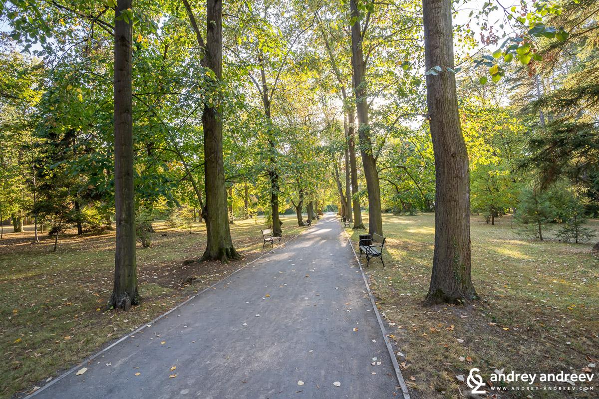 Алеите на парк Врана