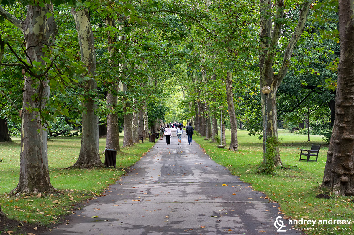 The alleys of Vrana park and Vrana palace near Sofia, Bulgaria