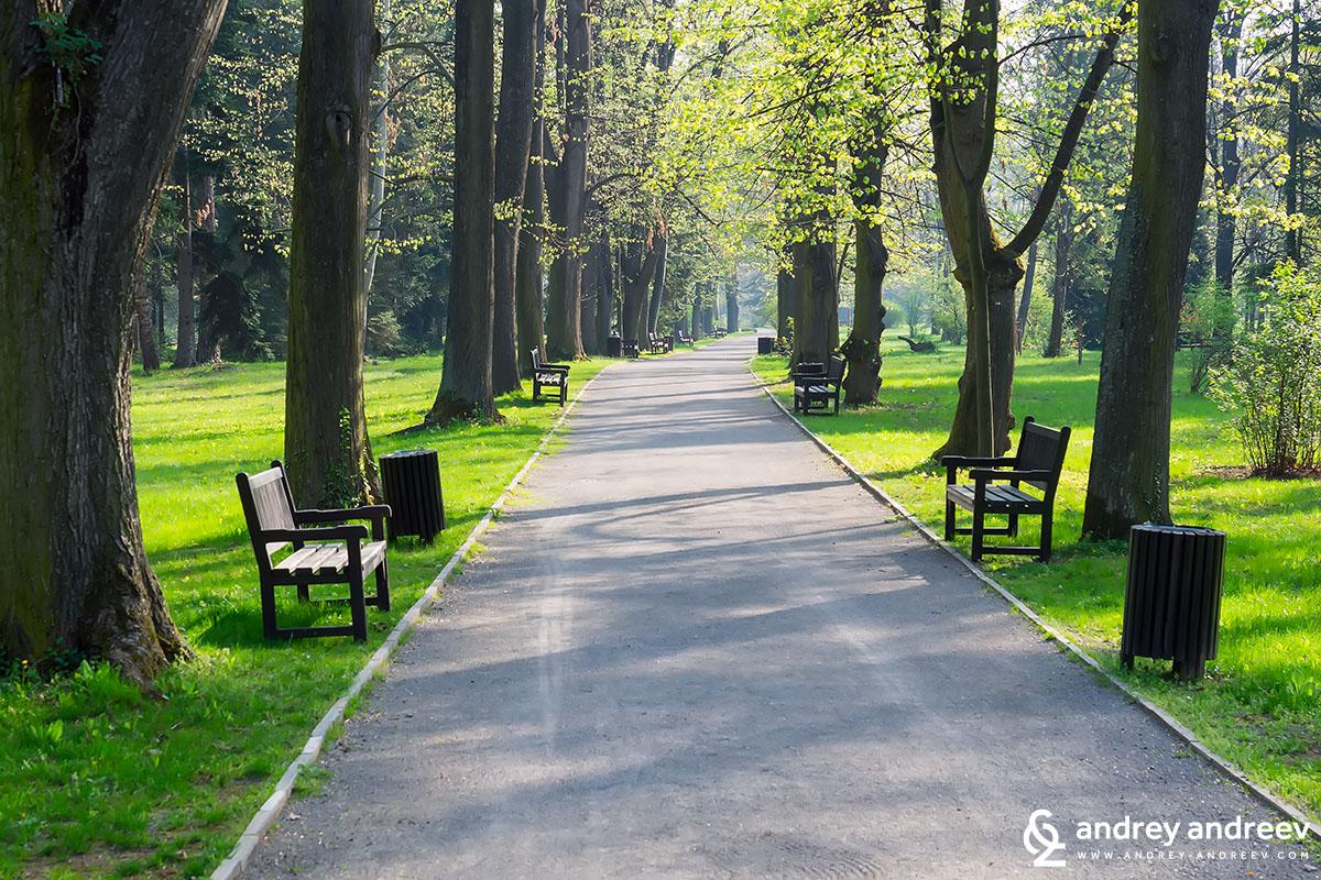 Алеите в парка са чудесни
