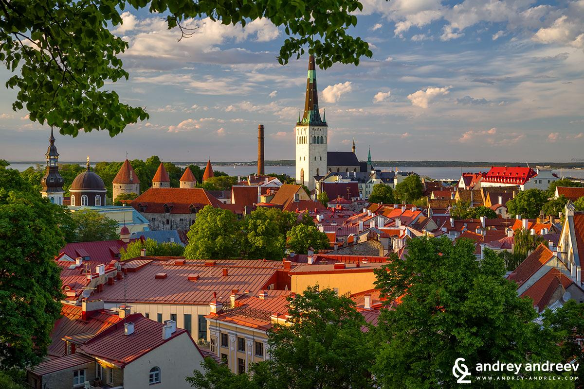 Покривите на стария град на Талин, Естония