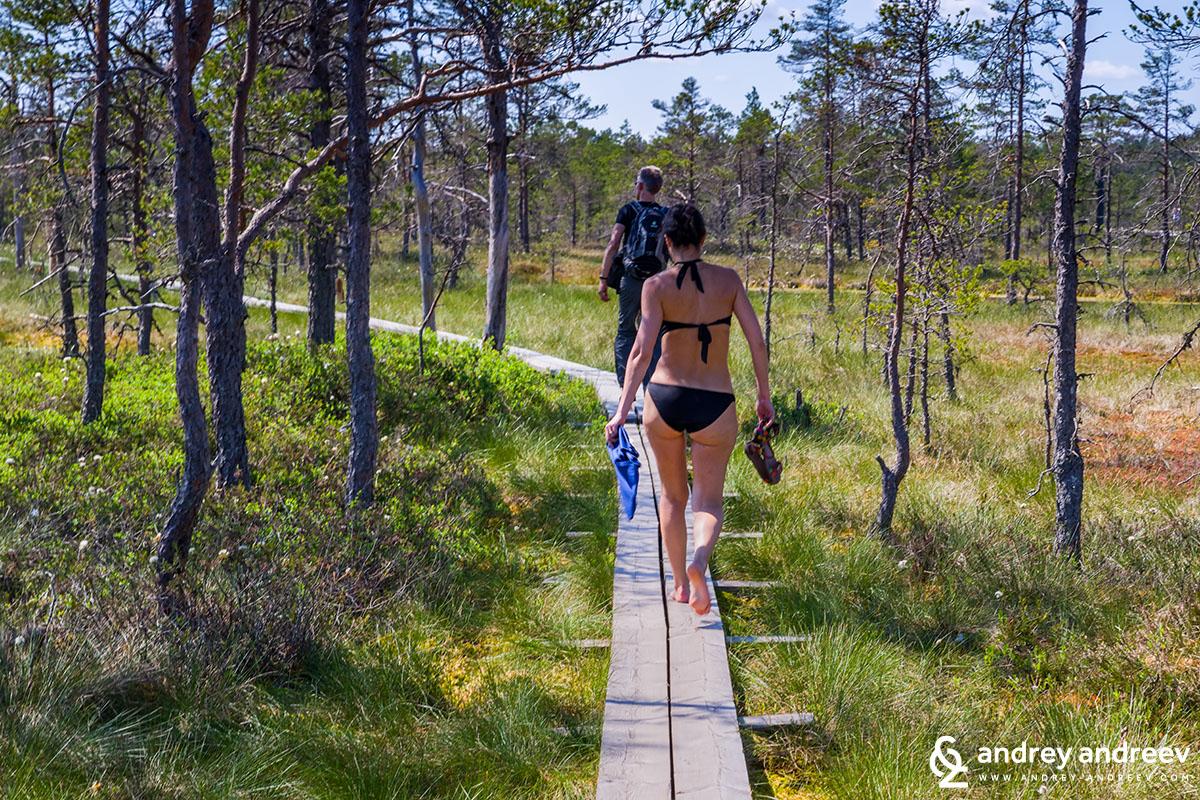 Наслаждаващите се на топлото време Естонци