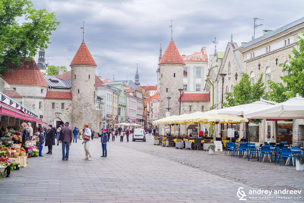 Портата Виру – най-туристическата част на Талин