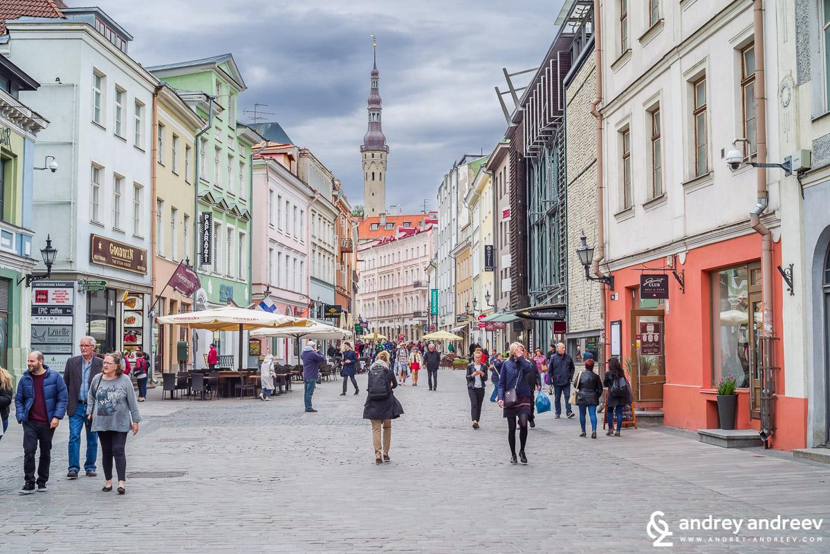 Улица Виру (Viru tänav) в Талин