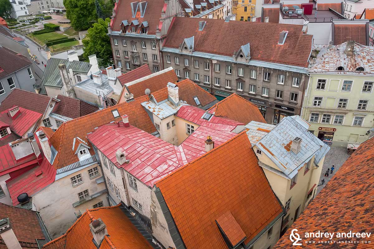 Rooftops of Old Tallinn