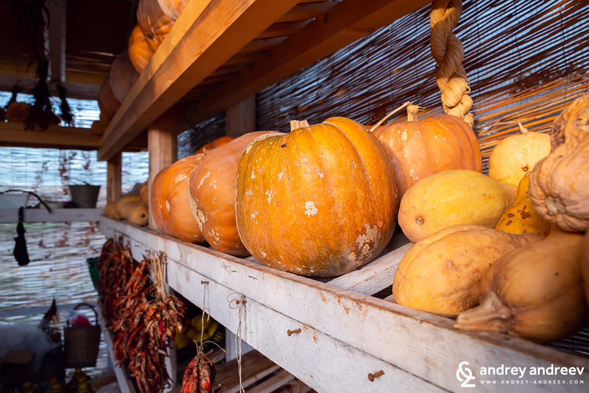 The warehouse with pumpkins and dried products