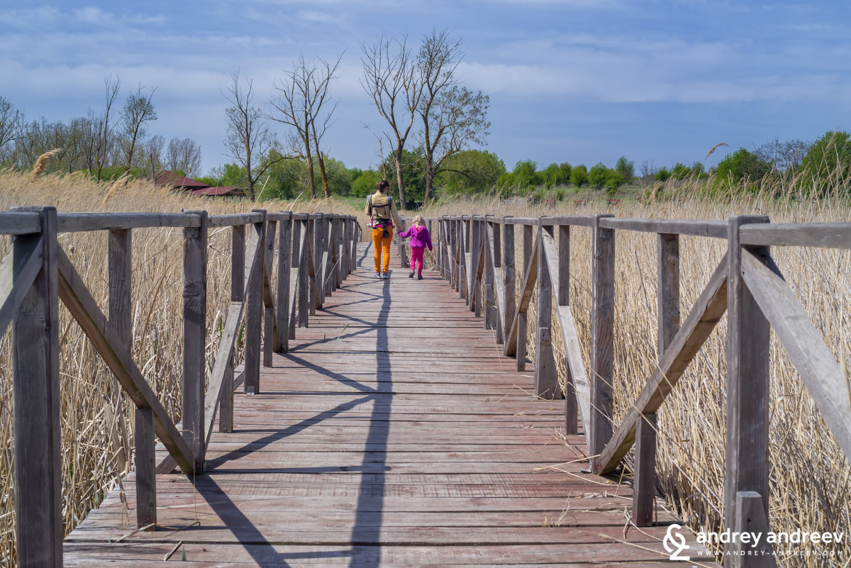 The bridge to the big island in Durankulak lake, Bulgaria