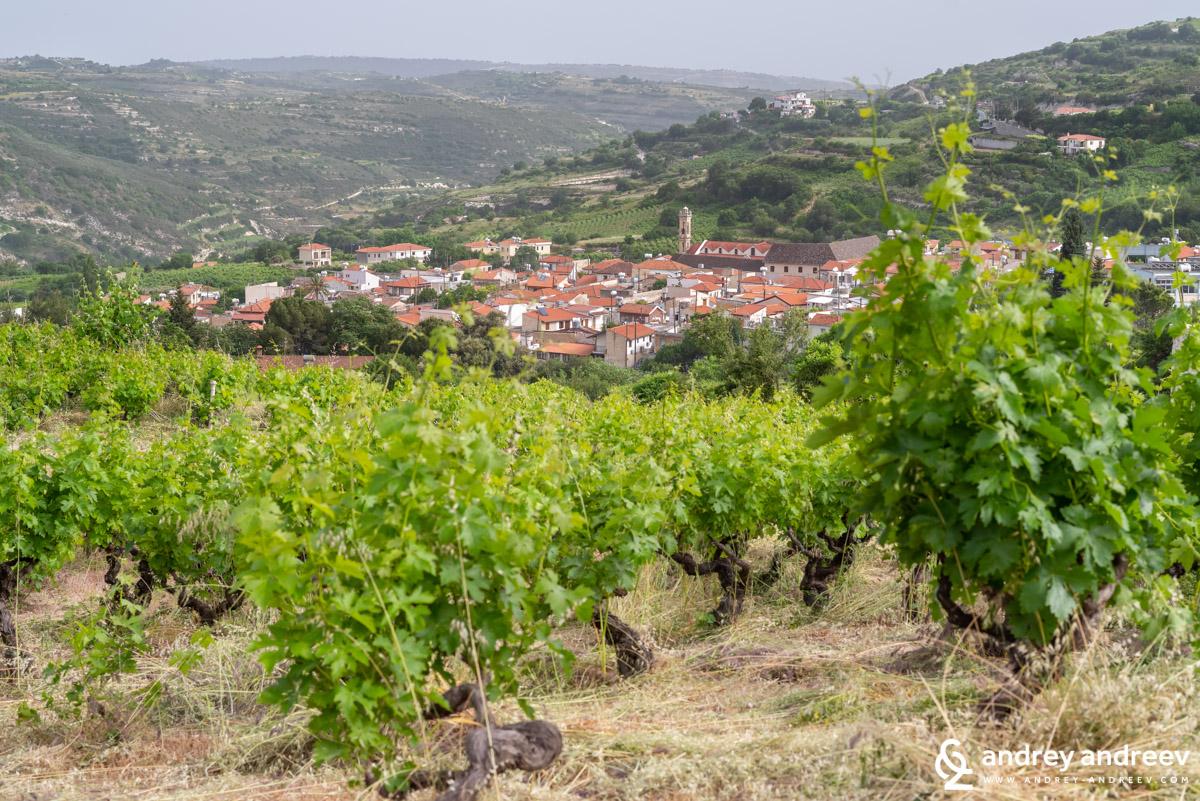 Село Омодос в Кипър