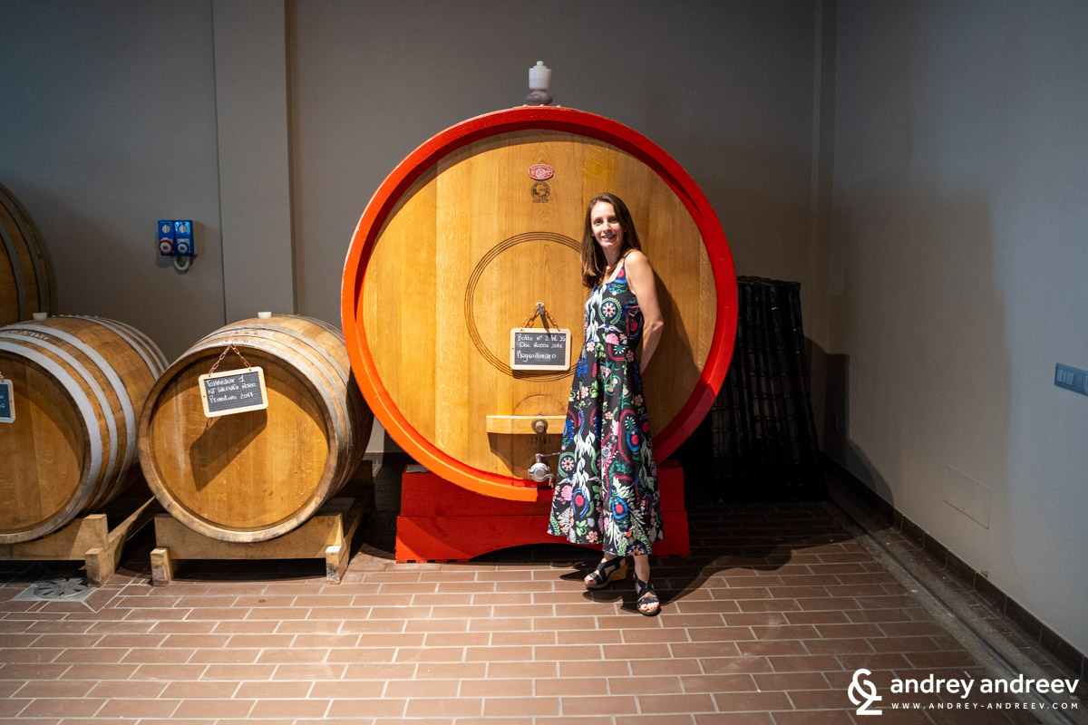 Maria is impressed by the big Slovenian barrels in Coppola Winery, Salento, South Italy