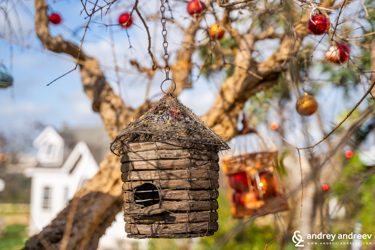 Christmas decorations ar Sante le Muse - a cozy farm where you can have amazing home-made lunch or just enjoy the countryside of Puglia