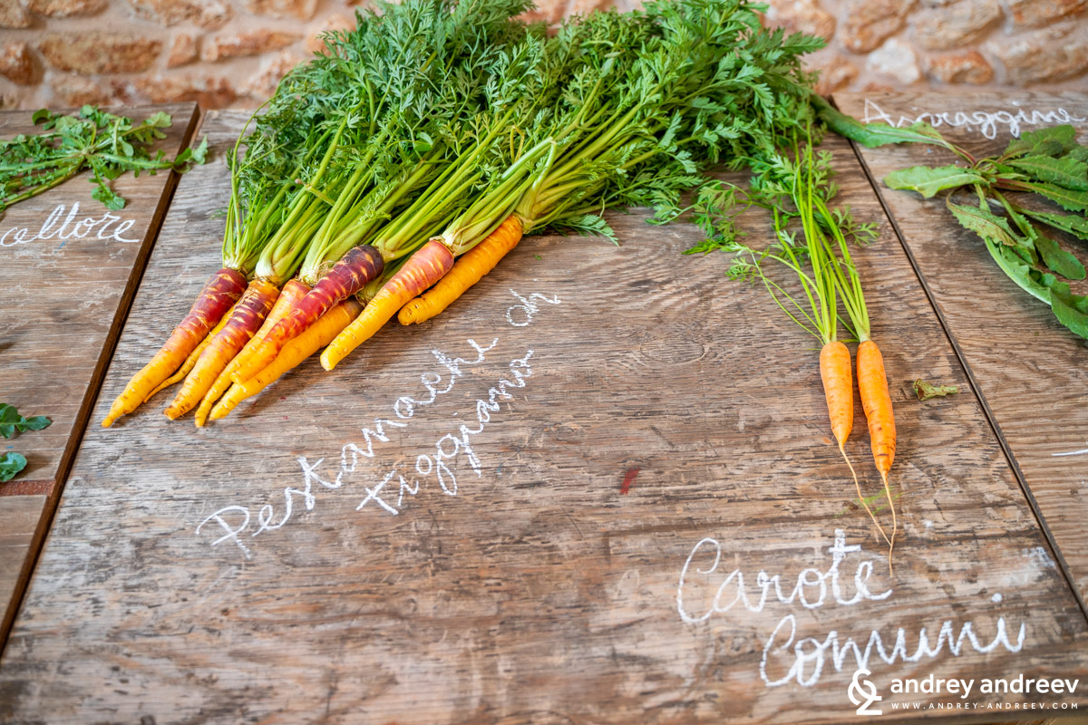 Sweet carrots and normal carrots