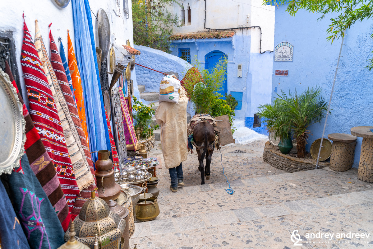 The old part of Chefchaouen is not accessible by car and baggage is often transported by mules