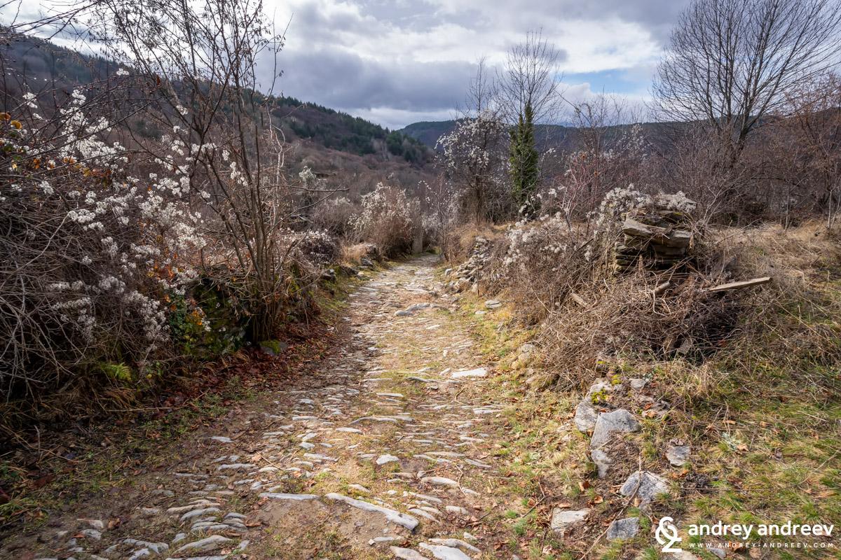 Пътят извън Ковачевица