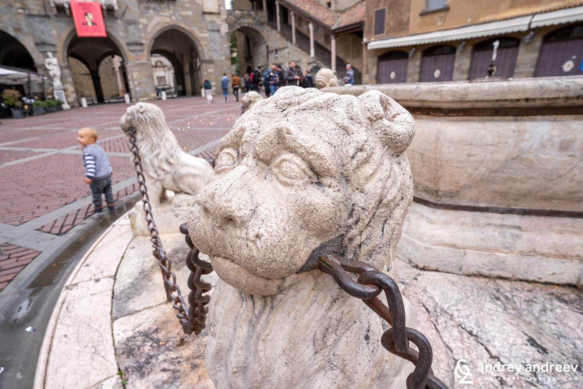 Лъвовете на Сфинксовете на Fontana di Piazza Vecchia