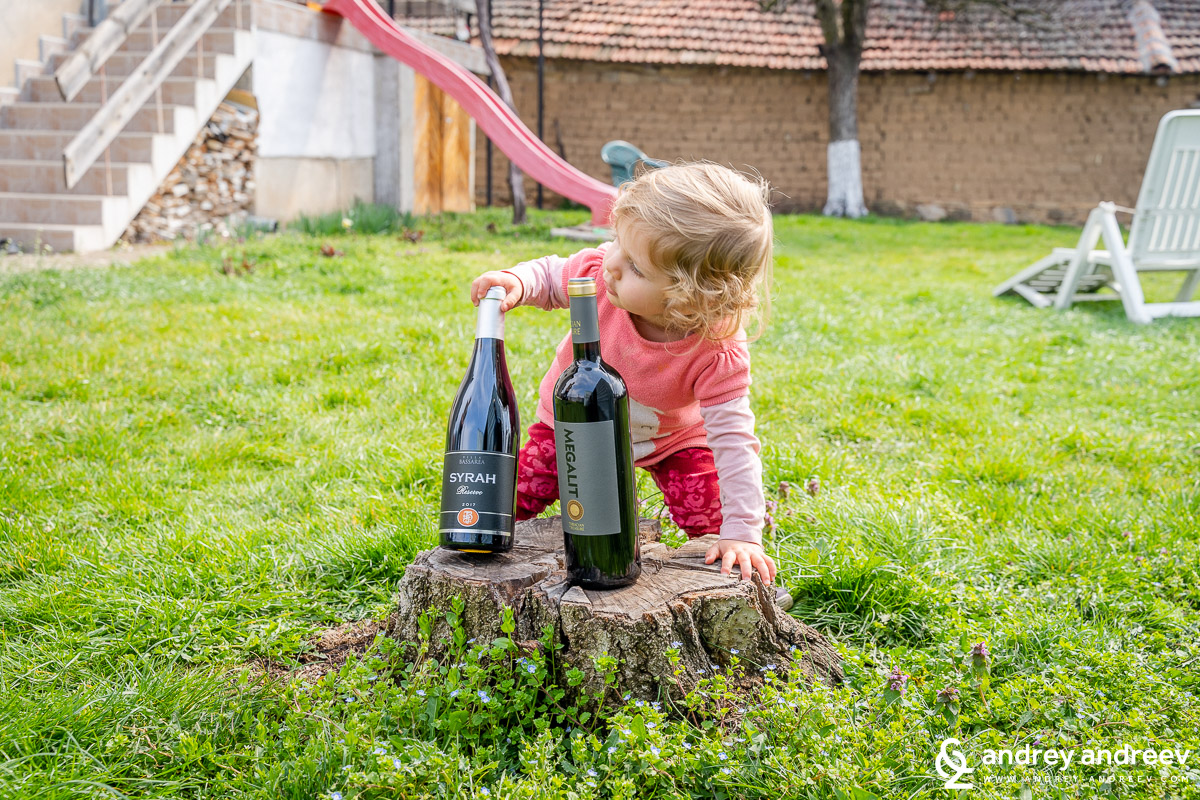 Little Adriana helps us pick between Syrah Reserve from Villa Bassarea and Megalit Syrah from Chateau Kolarovo