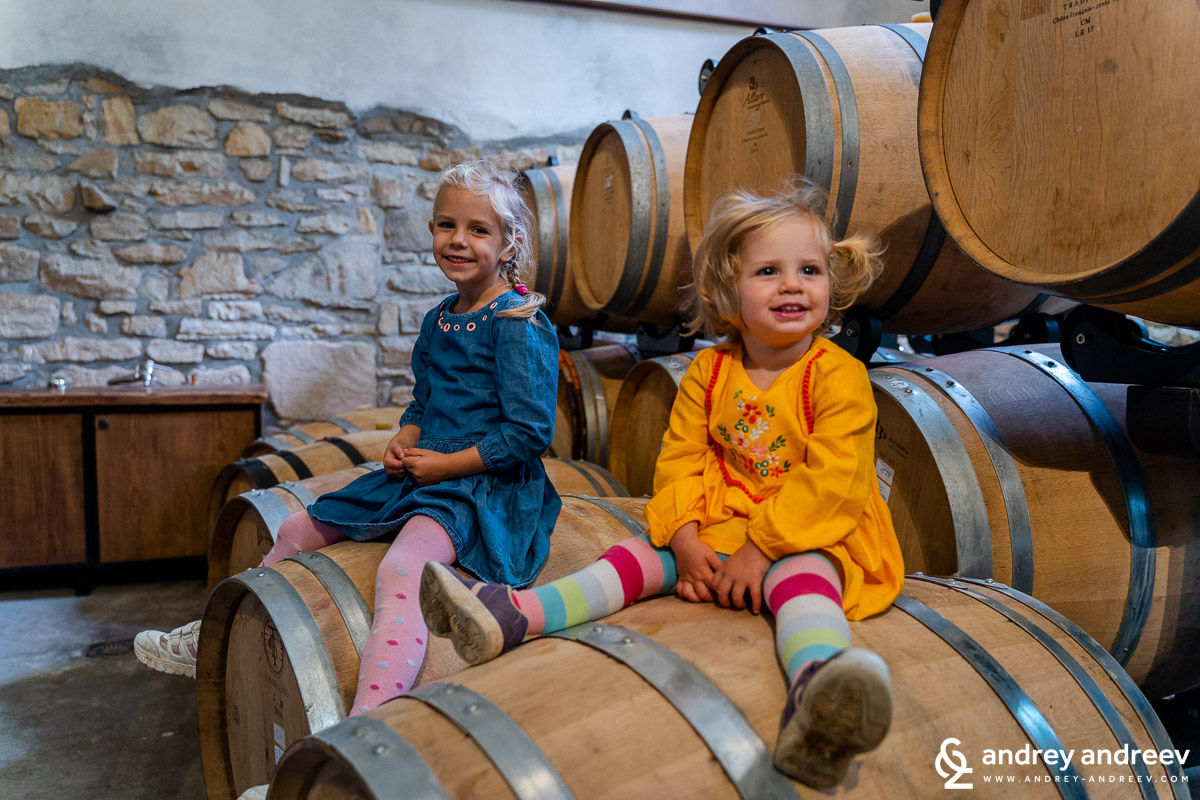 The kids also enjoyed the wine tour
