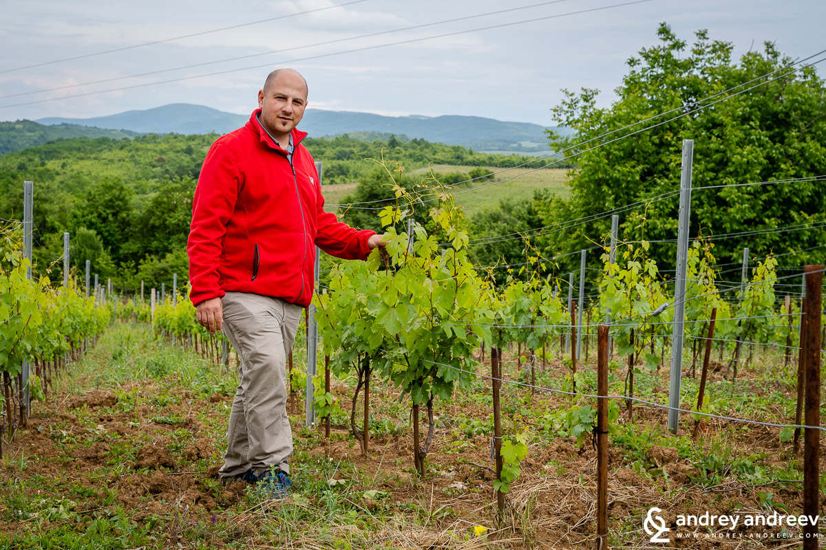 Dimitar Dimov, the enologist and co-owner of Yalovo winery