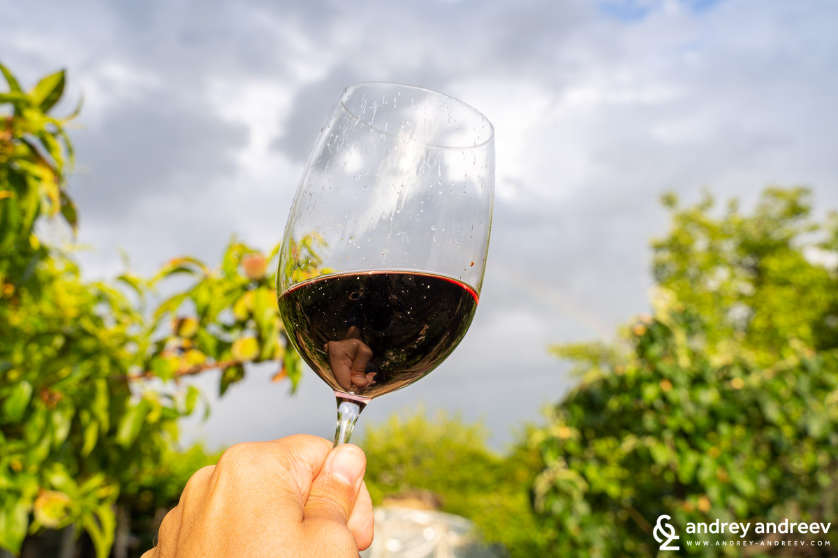 The glass with Le Vin Cabernet Sauvignon & Merlot from Svishtov Winery