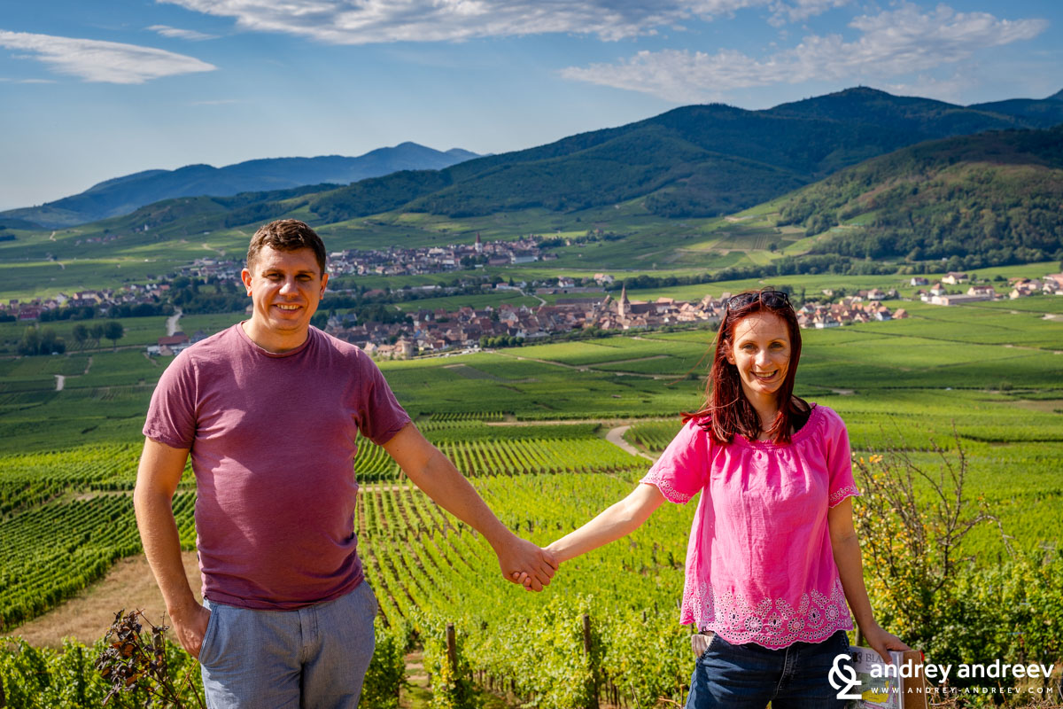 In the vineyards of Alsace