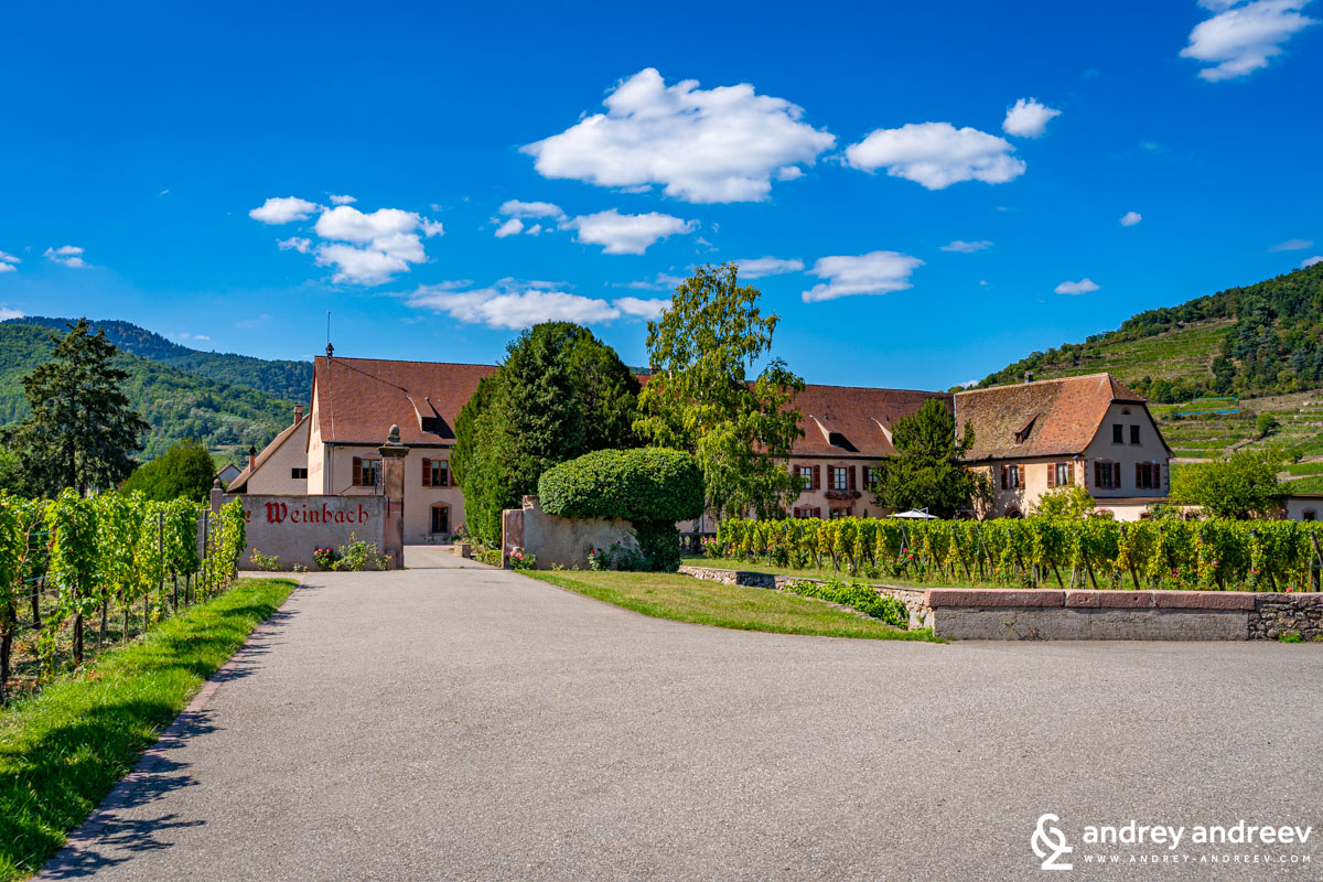 Domaine Weinbach - winery in Alsace France